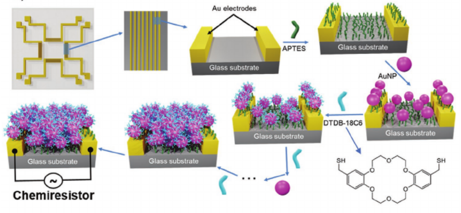 Harnessing Selectivity and Sensitivity in Ion Sensing via Supramolecular Recognition: A 3D Hybrid Gold Nanoparticle Network Chemiresistor